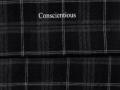 找类似面料的 聚酯纤维 做衬衫 裤子用的